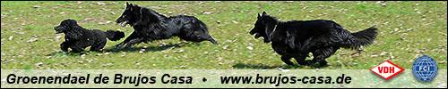 Banner Brujoscasa